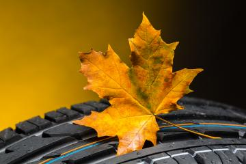 car tires change in the autumn with maple leaf  : Stock Photo or Stock Video Download rcfotostock photos, images and assets rcfotostock | RC-Photo-Stock.: