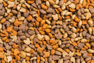 Cat food background texture- Stock Photo or Stock Video of rcfotostock | RC-Photo-Stock