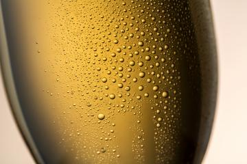champagne glass with drops of dew- Stock Photo or Stock Video of rcfotostock | RC-Photo-Stock
