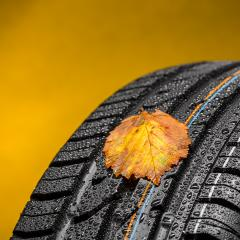 Change car tires at autumn with leaves and raindrops : Stock Photo or Stock Video Download rcfotostock photos, images and assets rcfotostock | RC-Photo-Stock.:
