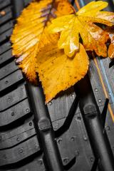 Change summer tires with autumn leaves- Stock Photo or Stock Video of rcfotostock | RC-Photo-Stock