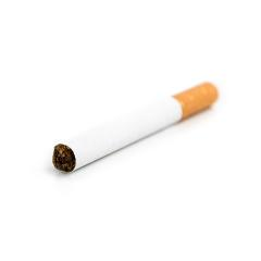 cigarette isolated on white- Stock Photo or Stock Video of rcfotostock   RC-Photo-Stock