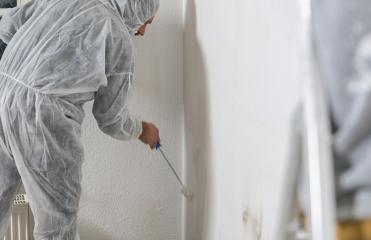 Close up of painter working with paint roller to paint the room in white color. do it yourself concept image- Stock Photo or Stock Video of rcfotostock | RC-Photo-Stock