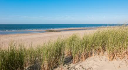 Coastline with dike ,sand and grass in Renesse, Holland- Stock Photo or Stock Video of rcfotostock | RC-Photo-Stock