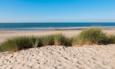 Coastline with dike ,sand and grass in Zeeland, Holland- Stock Photo or Stock Video of rcfotostock | RC-Photo-Stock