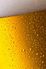 cold beer close-up with drops of condensation- Stock Photo or Stock Video of rcfotostock | RC-Photo-Stock