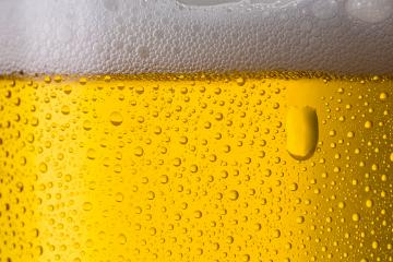 cold beer from the brewery : Stock Photo or Stock Video Download rcfotostock photos, images and assets rcfotostock | RC-Photo-Stock.: