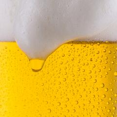 cold beer with dew drops- Stock Photo or Stock Video of rcfotostock | RC-Photo-Stock