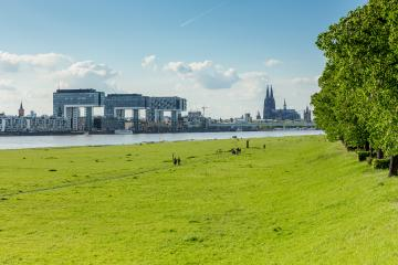 Cologne at spring in germany- Stock Photo or Stock Video of rcfotostock | RC-Photo-Stock