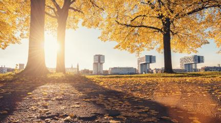 Cologne autumn view at sunset, germany- Stock Photo or Stock Video of rcfotostock | RC-Photo-Stock