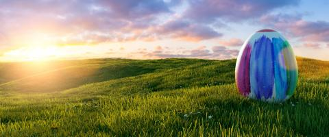 colorful big painted easter egg at easter on sunrise or sunset on a meadow landscape, Panoramic backgroud, with copyspace for your individual text.- Stock Photo or Stock Video of rcfotostock | RC-Photo-Stock