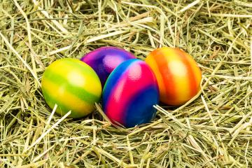 colorful easter eggs in a hay nest- Stock Photo or Stock Video of rcfotostock   RC-Photo-Stock