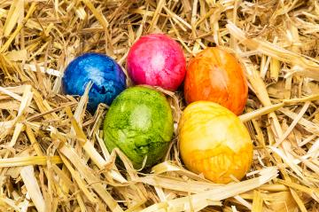 colorful easter eggs in a nest- Stock Photo or Stock Video of rcfotostock | RC-Photo-Stock