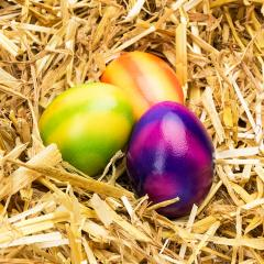 colorful easter eggs in straw- Stock Photo or Stock Video of rcfotostock | RC-Photo-Stock