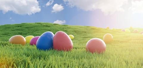 colorful easter eggs on a green meadow with sunlight, easter concept image - 3D Rendering : Stock Photo or Stock Video Download rcfotostock photos, images and assets rcfotostock | RC-Photo-Stock.: