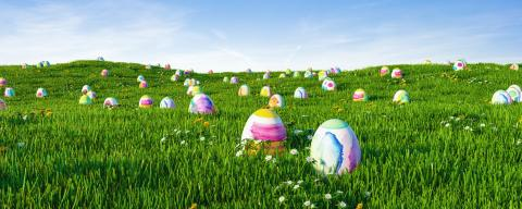 Colorful easter eggs on meadow for easter as a panorama background header- Stock Photo or Stock Video of rcfotostock | RC-Photo-Stock