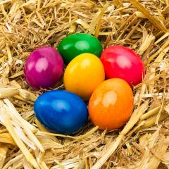 colorful hen easter egg in straw : Stock Photo or Stock Video Download rcfotostock photos, images and assets rcfotostock   RC-Photo-Stock.: