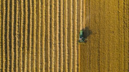 Combine harvester of an agricultural machine collects ripe golden wheat on the field. Drone Shot. copyspace for your individual text- Stock Photo or Stock Video of rcfotostock | RC-Photo-Stock
