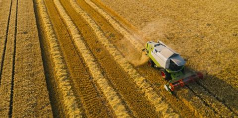 Combine harvesting corn. Aerial drone shot.- Stock Photo or Stock Video of rcfotostock | RC-Photo-Stock