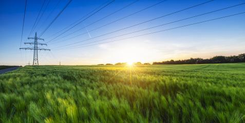 cornfield before sunset at dusk with power pole : Stock Photo or Stock Video Download rcfotostock photos, images and assets rcfotostock | RC-Photo-Stock.: