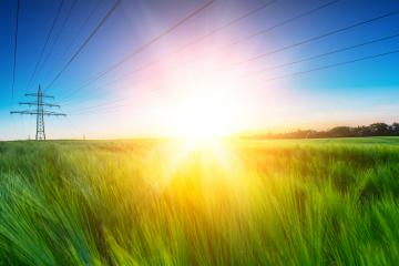 Cornfield with explosive sunset in summer- Stock Photo or Stock Video of rcfotostock | RC-Photo-Stock