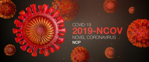 Cross-section of Sars-CoV-2 coronavirus which triggers the lung disease Covid-19 - 3D Rendering- Stock Photo or Stock Video of rcfotostock | RC-Photo-Stock