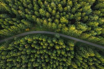 Curved path in the forest view from a drone : Stock Photo or Stock Video Download rcfotostock photos, images and assets rcfotostock | RC-Photo-Stock.: