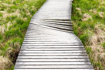 damaged boardwalk bog landscape with cloud sky : Stock Photo or Stock Video Download rcfotostock photos, images and assets rcfotostock | RC-Photo-Stock.: