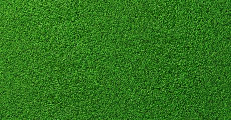 Detailed green soccer field grass lawn texture from above, background texture- Stock Photo or Stock Video of rcfotostock | RC-Photo-Stock