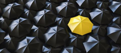 Different, unique and standing out of the crowd yellow umbrella- Stock Photo or Stock Video of rcfotostock | RC-Photo-Stock