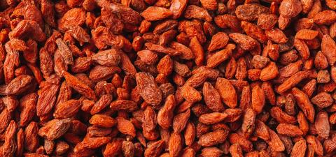 dried goji berries Background, banner size, superfood- Stock Photo or Stock Video of rcfotostock | RC-Photo-Stock