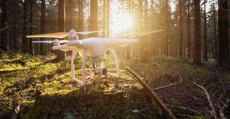 drone quad copter in the forest- Stock Photo or Stock Video of rcfotostock | RC-Photo-Stock