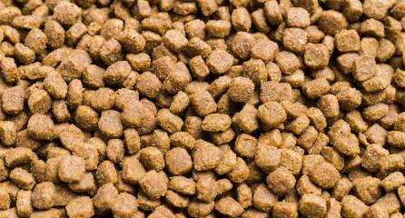 Dry cat food used as background- Stock Photo or Stock Video of rcfotostock | RC-Photo-Stock
