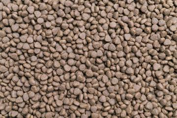Dry food for dog and cat background- Stock Photo or Stock Video of rcfotostock | RC-Photo-Stock