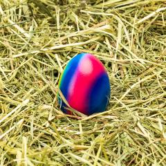 easter egg in rainbow colors on hay- Stock Photo or Stock Video of rcfotostock | RC-Photo-Stock