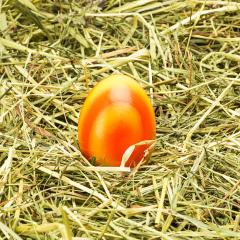 easter egg on hay- Stock Photo or Stock Video of rcfotostock | RC-Photo-Stock