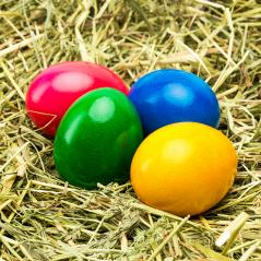 easter eggs in different colors : Stock Photo or Stock Video Download rcfotostock photos, images and assets rcfotostock | RC-Photo-Stock.: