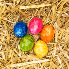 easter straw nest with colored eggs- Stock Photo or Stock Video of rcfotostock | RC-Photo-Stock