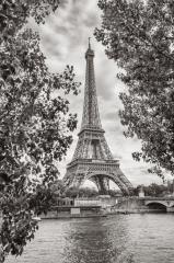 Eiffel Tower view on Seine river in Paris, France. Black and white colored- Stock Photo or Stock Video of rcfotostock | RC-Photo-Stock
