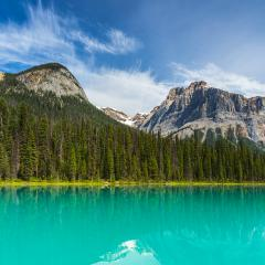Emerald Lake in summer Alberta Canadian Rockies- Stock Photo or Stock Video of rcfotostock | RC-Photo-Stock