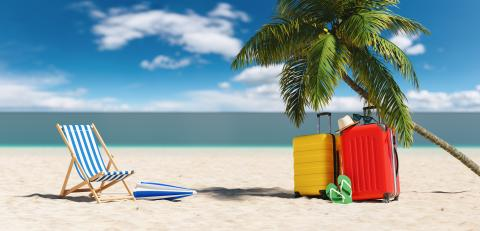 Empty beach chairs with suitcases flip-flop sandals, sunglasses under a palm tree at the beach during a summer vacation in the Caribbean : Stock Photo or Stock Video Download rcfotostock photos, images and assets rcfotostock | RC-Photo-Stock.: