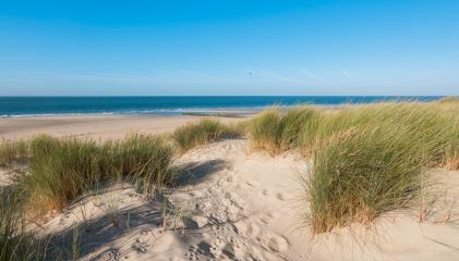 Empty beach with dunes waves and the sea- Stock Photo or Stock Video of rcfotostock | RC-Photo-Stock