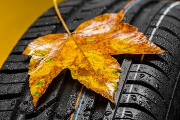 Every year Tire change in autumn  : Stock Photo or Stock Video Download rcfotostock photos, images and assets rcfotostock | RC-Photo-Stock.: