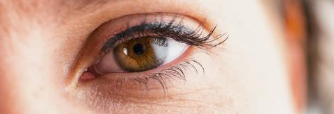 Female eye with eyelashes close-up : Stock Photo or Stock Video Download rcfotostock photos, images and assets rcfotostock | RC-Photo-Stock.: