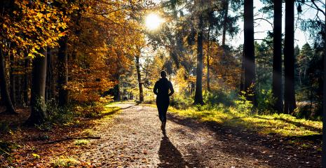 Female Runner in Silent Forest in spring with beautiful bright sun rays : Stock Photo or Stock Video Download rcfotostock photos, images and assets rcfotostock | RC-Photo-Stock.: