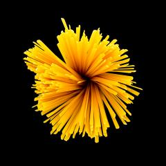 Fettuccine swirl on black- Stock Photo or Stock Video of rcfotostock | RC-Photo-Stock