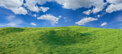 field with blue sky panorama - 3D Rendering- Stock Photo or Stock Video of rcfotostock | RC-Photo-Stock