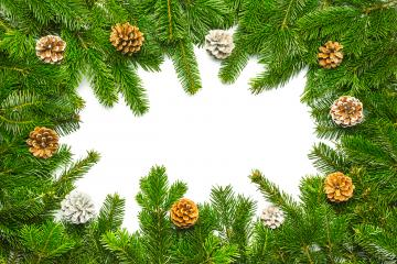fir branches with pine cones in a cirle- Stock Photo or Stock Video of rcfotostock | RC-Photo-Stock