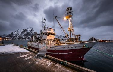 Fischerboot im Hafen, stürmisches Wetter, Lofoten, Norwegen : Stock Photo or Stock Video Download rcfotostock photos, images and assets rcfotostock | RC-Photo-Stock.: