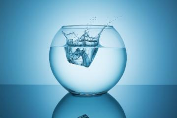 fishbowl with water splash impact- Stock Photo or Stock Video of rcfotostock | RC-Photo-Stock